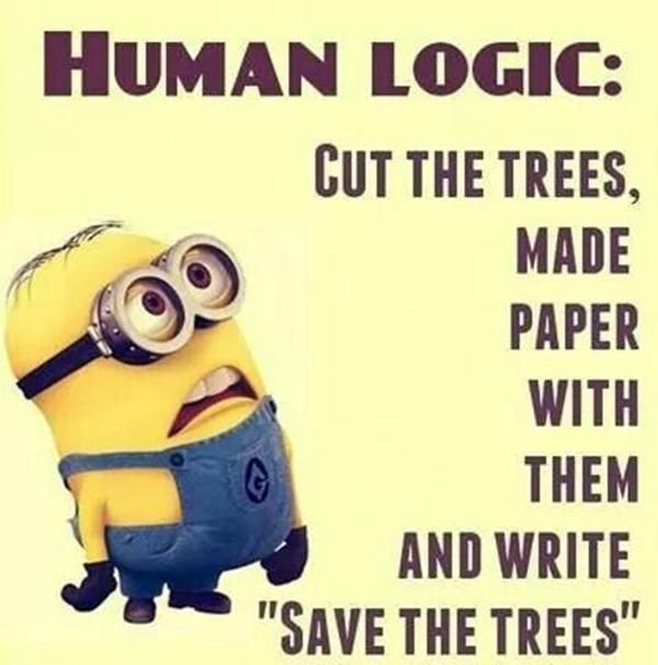 40 of The Best Minion Memes and Sayings That will Instantly Make You Happier - C...