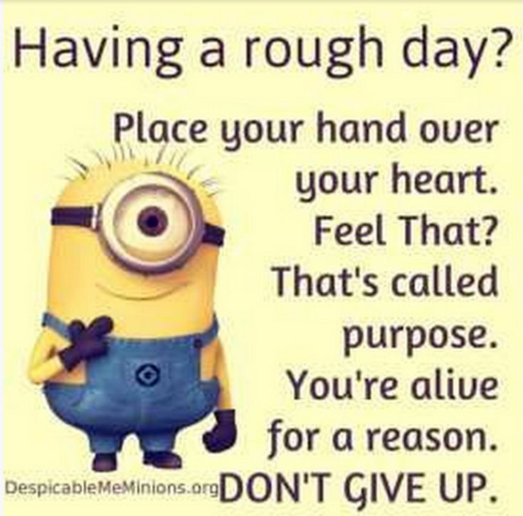 Facetious Minions pictures with quotes (09:01:29 PM, Saturday 24, October 2015 P...