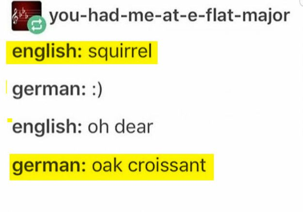 German is like a jungle. You quickly lose the perspective.