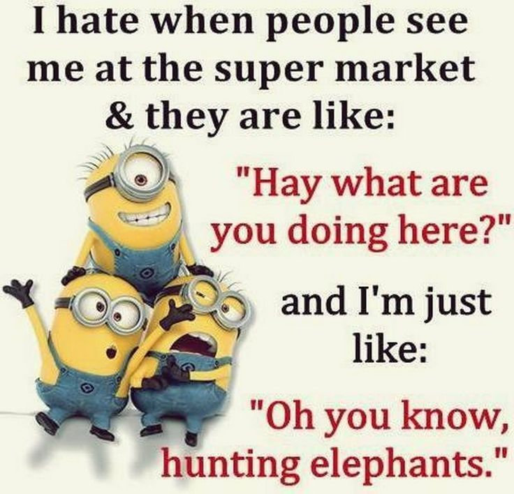 Today Funny minions pics with quotes (08:49:36 AM, Sunday 23, August 2015 PDT) ....
