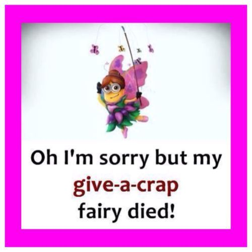 "4""x4"" Fridge Fridge Magnet Minion Meme Silly Funny Humor Give A Crap Fairy #mini..."