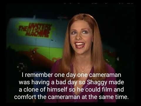 Wholesome Shaggy. Get Daily #funny #funny_memes #memes #video #lol #pic