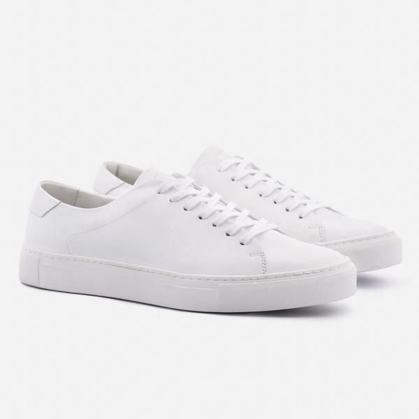 Sneakers - information, fashion and shopping tips for sneakers Reid Low Top Snea...