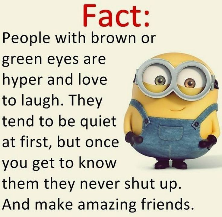 180 BEST MINION MEME TO MAKE YOU LAUGH AND GAIN MOTIVATION