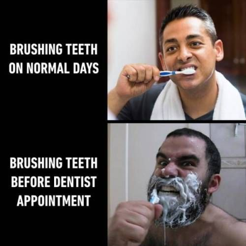 47 Of Today's Freshest Pics And Memes - #Freshest #memes #Pics #Todays